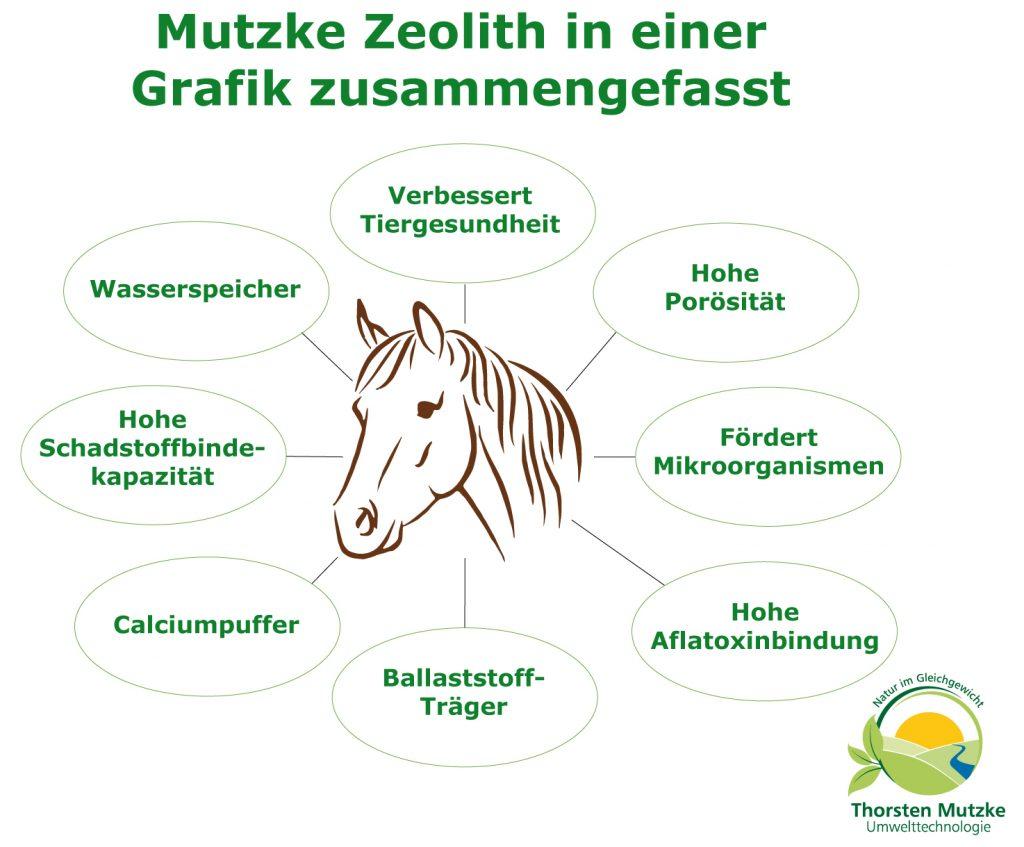 Mutzke Zeolith Grafik - Uebersicht