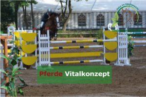 Pferde Vitalkonzept -Spitzensport, Englisch Reiter