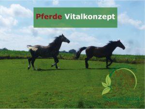 Pferde Vitalkonzept - Glueckliche Pferde